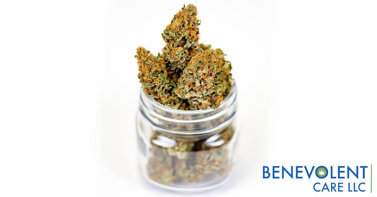 Florida medical marijuana